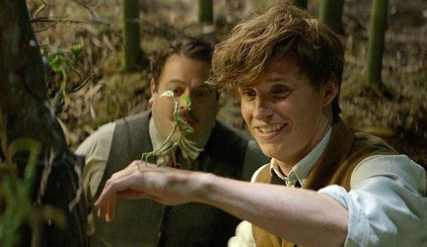 Jacob, Newt e un asticello, molto più tenero di come lo immaginassi